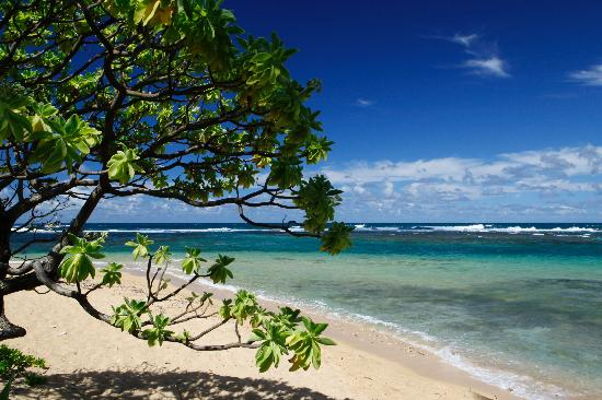 Hale Makai Cottages: Another beach view