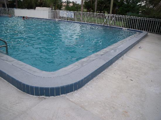 Warm Mineral Springs Motel: The pool