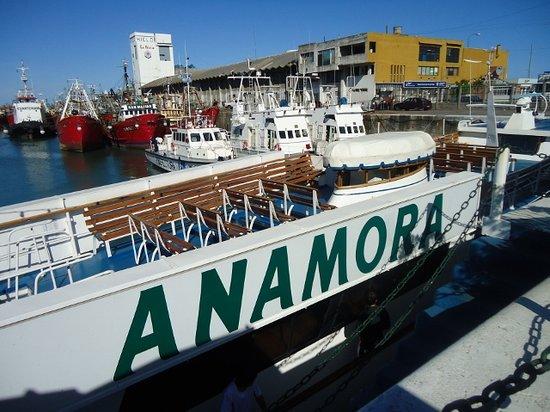 Crucero Anamora