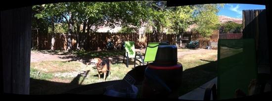 Kokopelli Lodgings: the backyard