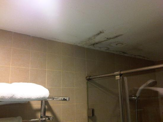 Meganeon Sea View Hotel: Mould on the bathroom ceiling