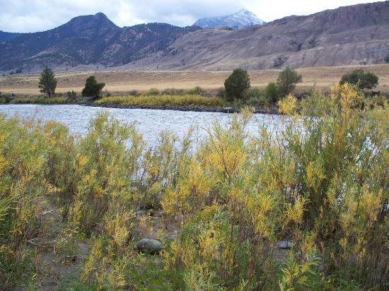 Headwaters of the Yellowstone Bed and Breakfast: View of the Yellowstone river from the cabin