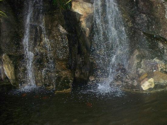 Kapmar Hotel : waterfall