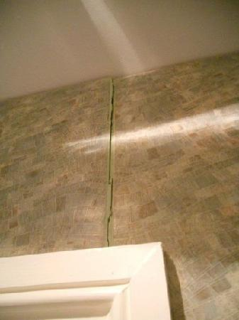 Ascot Hyde Park Hotel : bathroom tile above door, came off more everytime door was closed