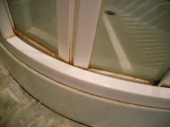 Ascot Hyde Park Hotel : shower