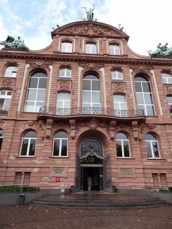 Музей естественной истории Зенкенберг