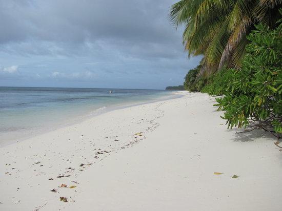 Desroches Island : Strand zu Villa