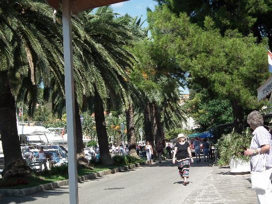 Hotel Cavtat: Cavtat sea front