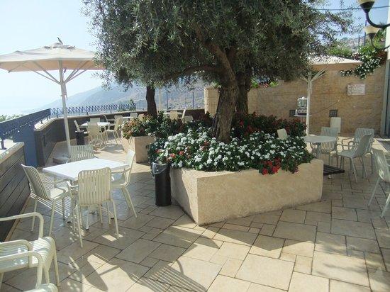Hotel Prima Galil: Great olive tree lounge bar balcony