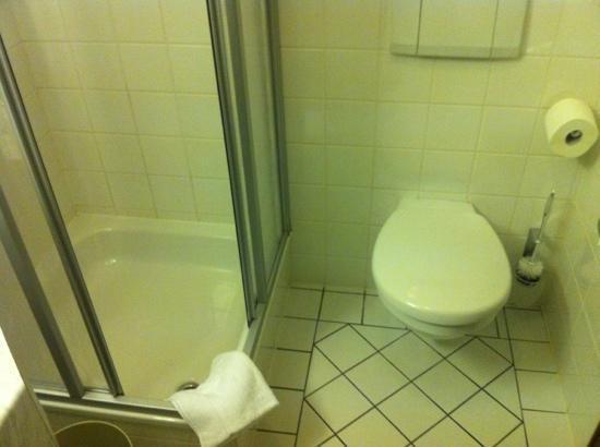 Ulfsunda Castle: dusch och toalett