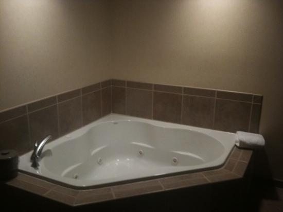 Hampton Inn Belle Vernon : whirlpool tub very nice