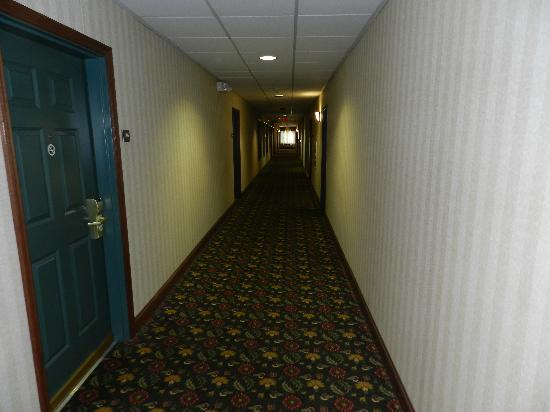 Country Inn & Suites By Carlson, Lehighton (Jim Thorpe: Hallway