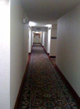 Hampton Inn Hillsville: clean hallways