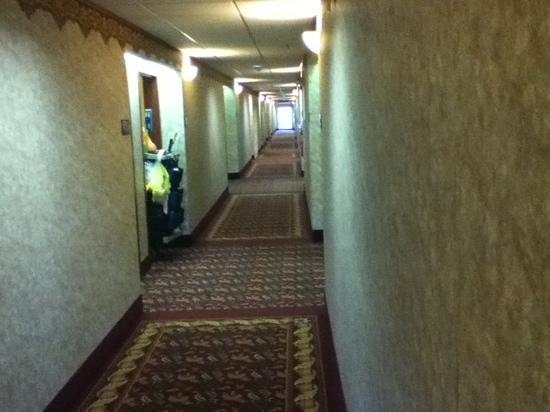 Hampton Inn Winfield/Teays Valley : spacious hallways.