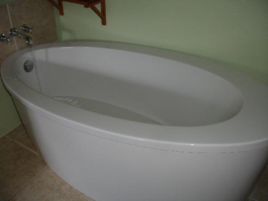 Angler and Antelope Guesthouse : La baignoire de mes rêves!