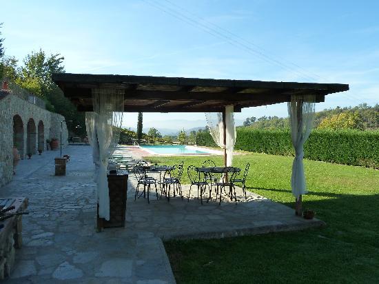 Agriturismo Le Buche di Viesca: The pool area