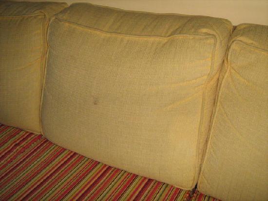 Dolphin Inn: Dirty sofa