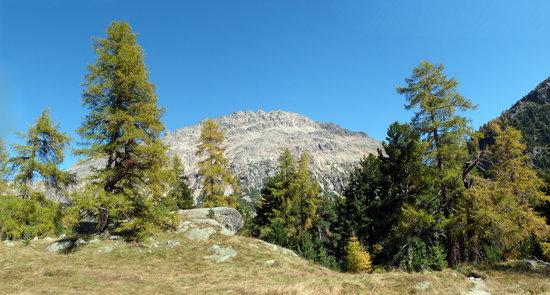 Morteratsch Glacier: Blick vom Chünetta-Aussichtspunkt zum Morteratsch-Gletscher