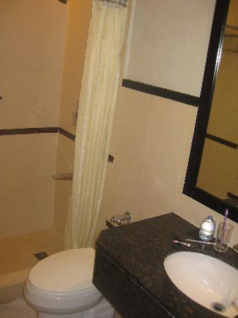 Bathroom with shower stall - Picture of Mallberry Suites Business ...