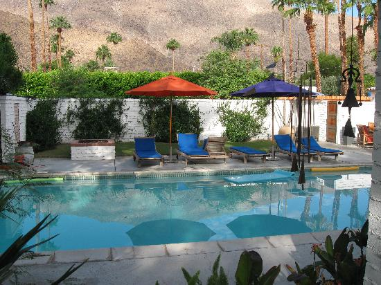 Casa Ocotillo: Swimming Pool