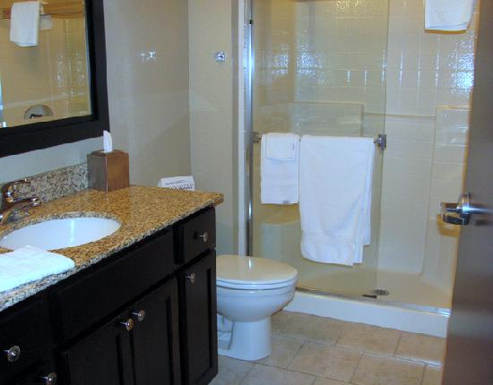 Simmons Suites: bath with closet not pictured
