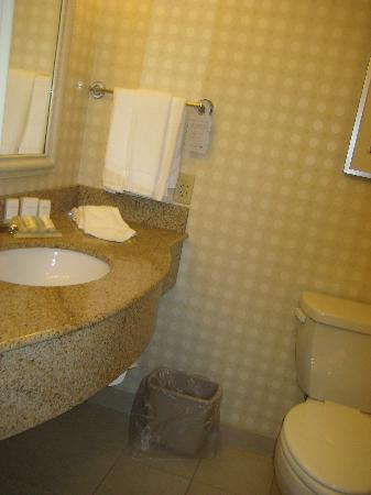 Hilton Garden Inn Harrisburg East: new grout needed here too