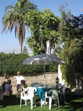 Biruk B&B Addis Ababa: The famous garden