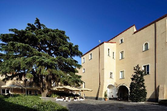 Relais Villa Buonanno: il magico cortile con un imponente cedro libanese circondato da piante di lavanda e rosmarino