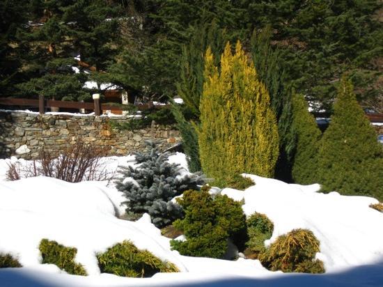 Els Avets Hotel: En invierno.
