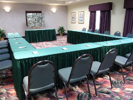 Quality Suites Lake Buena Vista: Meeting room