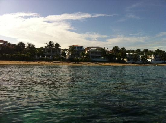Villa Tropical Oceanfront Apartments on Shacks Beach: View of Villa Tropical from the Ocean (from a Kayak)