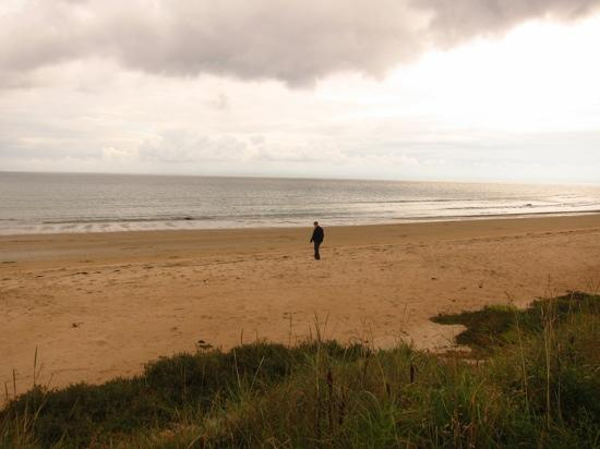 Wemyss House: local beach, clean and quiet! (and the sun was out!)