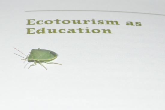 Ecolodge de Cabaneros: foto programa ecoturismo