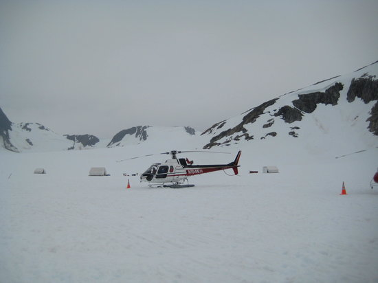 Era Helicopters: Approaching dog camp 3