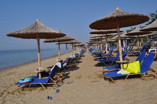 Hotel Melissa Gold Coast: Organised Beach-Sunbeds-Umbrelas