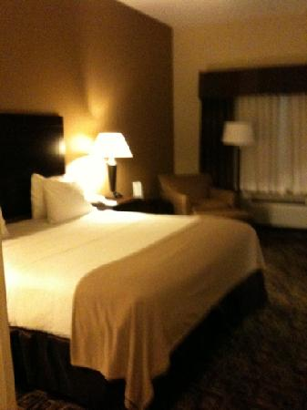 Holiday Inn Express Hotel & Suites Zanesville North : King bed