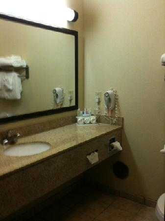 Holiday Inn Express Hotel & Suites Zanesville North : Bathroom