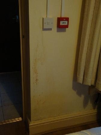 Ullet Suites: Damp near electrical switch