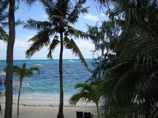 海洋維達海灘潛水度假酒店照片