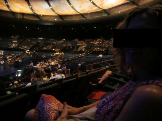 Inside The Theatre Picture Of Mystere By Cirque Du