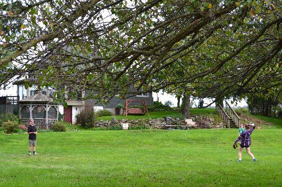Frogtown Acres Bed and Breakfast: Plenty of room to fun around