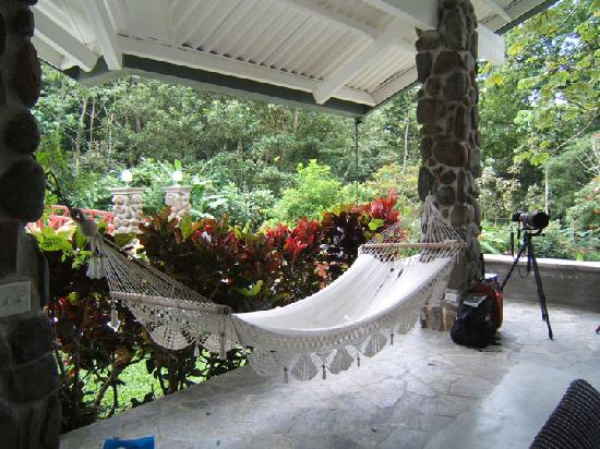 Canopy Lodge : hammock in the lounge area