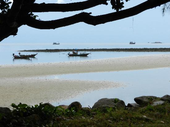 Wattana Resort: View from our bungalow