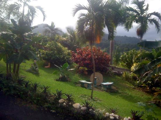 Jamaica Crest Hotel: hotel