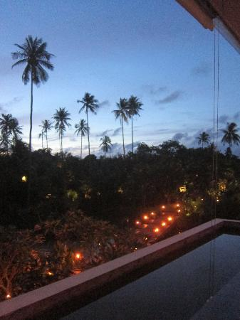 View from the Treetop bar