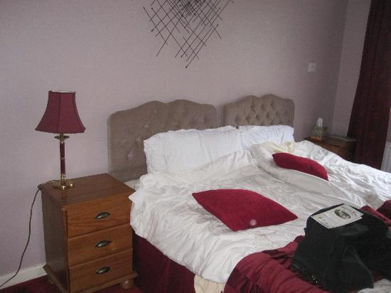 Dolgun Uchaf  B & B: Beds and night stands