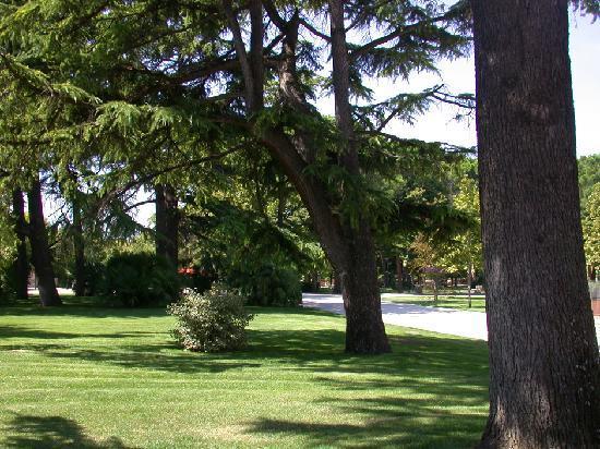 B&B Santopietro: Parco dei Canapè
