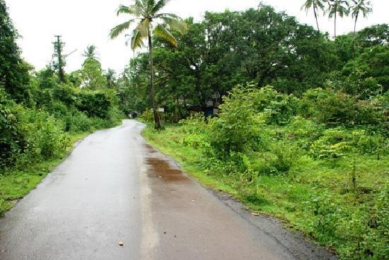Goveia Holiday Homes: when we went biking