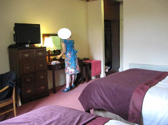 Falls Hotel & Spa: Standard room