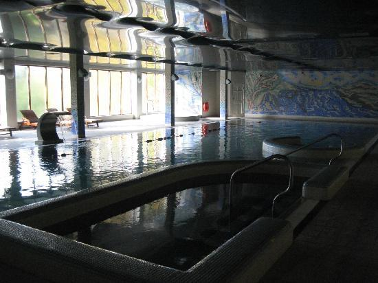 Falls Hotel & Spa: Good swimming pool